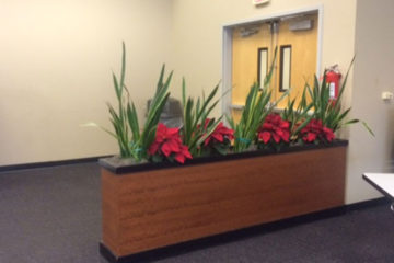 An image of a large planter built into a partial-height wall in a corporate office