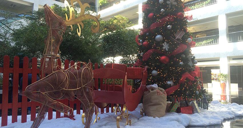 An image of a Christmas tree, deer, and a sleigh